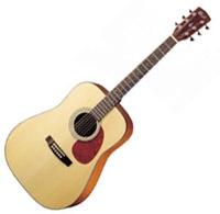 Guitare électro-acoustique Cort Earth 100F