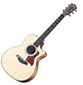Taylor 100 series 114 CE
