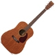 Guitare folk Martin & Co 15 serie D-15