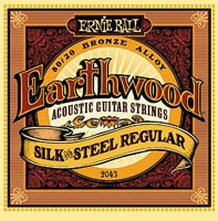 Ernie Ball Earthwood silk and steel regular 13-56