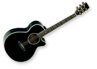 Guitare électro-acoustique Tanglewood Sundance 49BKDLXB