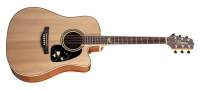 Takamine G series EG50TH