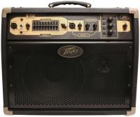 Ampli electro-acoustique Peavey Ecoustic 110