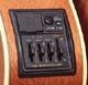 Micro guitare et basse Takamine Graph-EX Pré-ampli