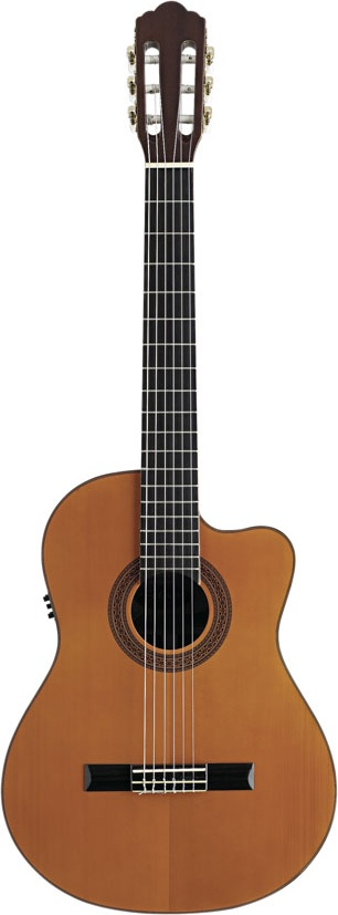 achat guitare electro acoustique angel lopez comparer les prix angel lopez sur l 39 espace achat. Black Bedroom Furniture Sets. Home Design Ideas
