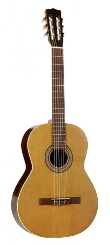 Achat guitare la patrie comparer les prix la patrie sur for Housse guitare folk