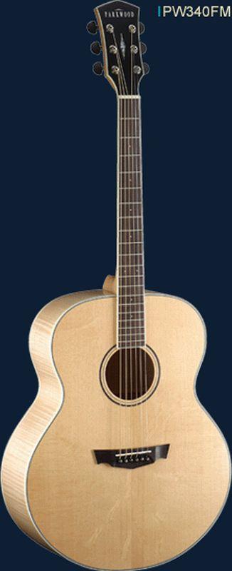 Achat guitare parkwood comparer les prix du catalogue for Housse guitare folk