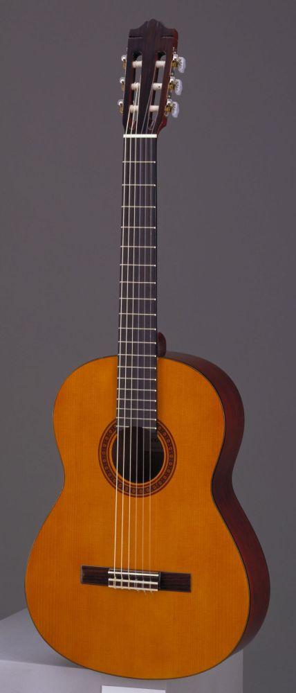 achat d 39 une guitare prix stock et magasins pour acheter moins cher votre guitare lectrique. Black Bedroom Furniture Sets. Home Design Ideas