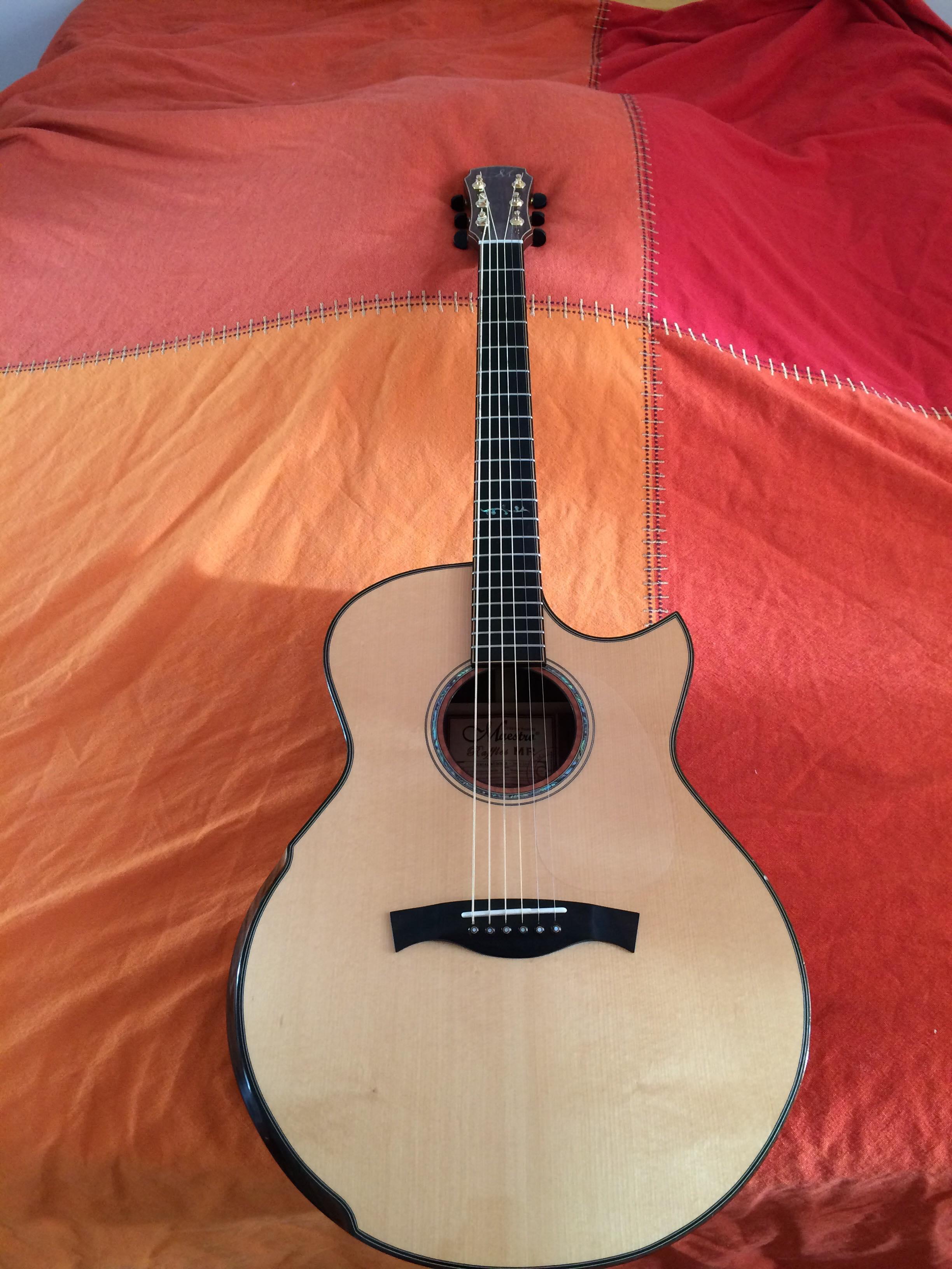 guitare lectro acoustique de luthier annonce guitare lowden. Black Bedroom Furniture Sets. Home Design Ideas