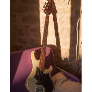 Vends Gibson Victory Bass fretless