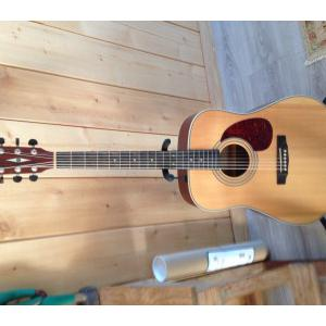 Guitare Folk CORT Erth 70 ns