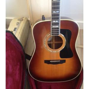 Guild Dreadnought D 55