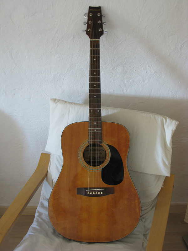 guitare sherwood